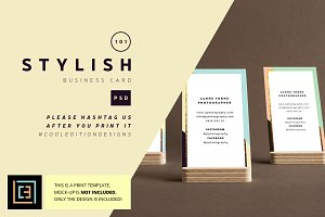 Stylish - Business Card 101