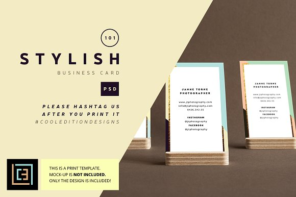 Stylish Business Card 101 Cards