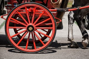 Wooden wheel car Spanish horses