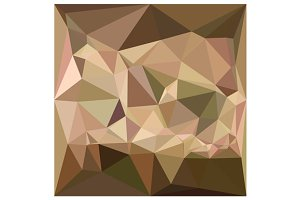 Burlywood Abstract Low Polygon