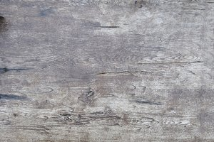 Wood Texture III
