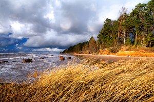 Baltic sea. Storm