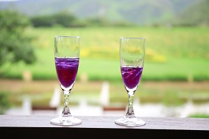 Two of wine glasses with grape vineyard in background