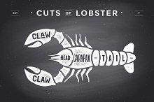 Cut of meat set, chalkboard. Lobster