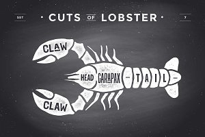 Cut of meat set, chalkboard. Lobster