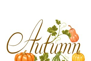 Autumn backgrounds with pumpkins.