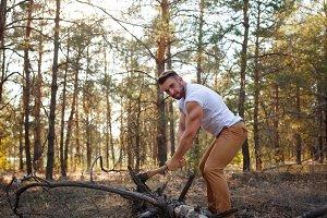 Lumberjack chop a fallen tree.