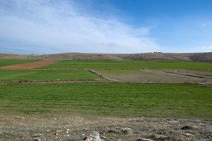 The field in Teruel