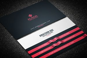 Elegant Business Card V-02