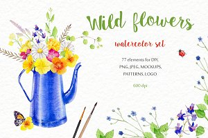 Wild flowers watercolor set