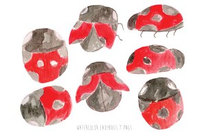 Watercolor Ladybugs