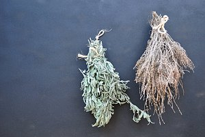 bunches of dried herbs