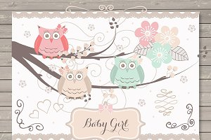 Baby girl/baby owl clipart/invitatio