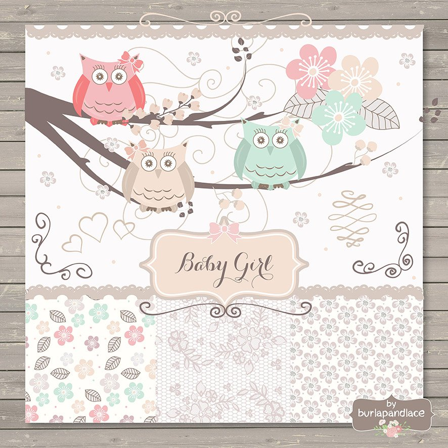 Baby girlbaby owl clipartinvitatio illustrations creative market filmwisefo