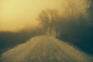 Foggy and Snowy Road