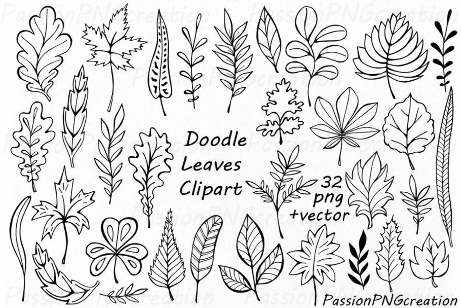 Hand Drawn Doodle Leaves Clipart Pre Designed Illustrator Graphics Creative Market