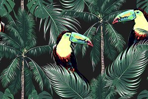 Toucans,palm leaves,trees pattern