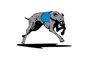 Greyhound Dog Racing Retro