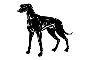 Greyhound Dog Retro
