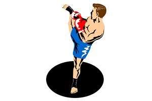 Single Kickboxer Kicking
