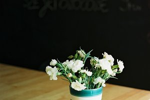White carnations on table