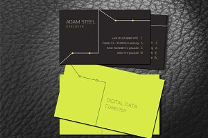 Digital Data Business Card