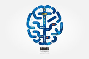 Infographics Vector Brain Colour