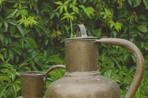 Garden steel pitchers photo