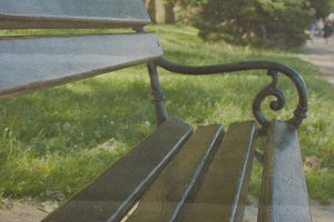 Empty bench in the park photo