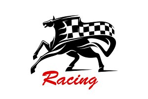 Racing icon for motorsport