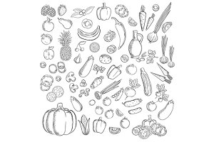 Sketches of fruits and vegetables