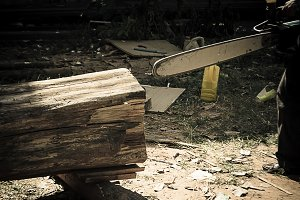 Saw blade for cutting timber