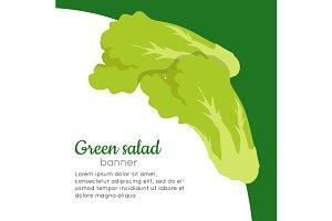 Green Salad Banner