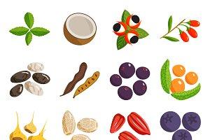 Vegetarian food vector set