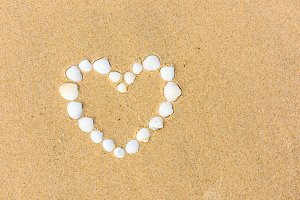 sea shell heart on the beach