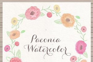 Hand Painted Watercolor Paeonia