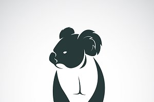 Vector image of a koala bear design.