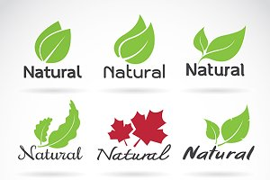 Natural logo design vector template.