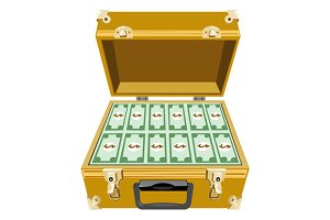 Money in Briefcase