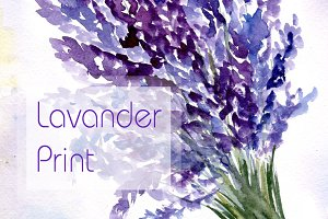 Watercolor Lavender Bouquet Print
