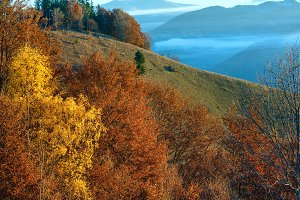 Autumn  Carpathian mountain scenery