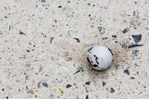 Golf ball in rough