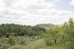 Landscape Horta de Sant Joan