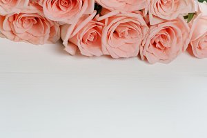 Bunch of pink roses on white wood background