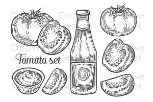 Hand drawn tomato set