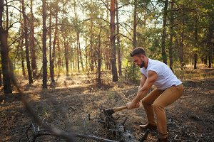 Lumberjack chopping a fallen tree