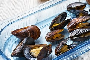 Cooked sea mussels
