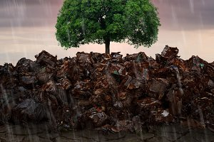Conceptual image of green tree