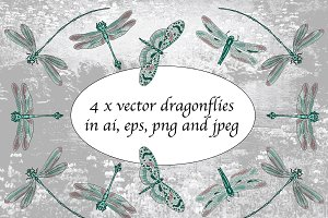 4 x vector dragonflies with clipart