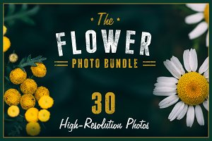 The Flower Photo Bundle
